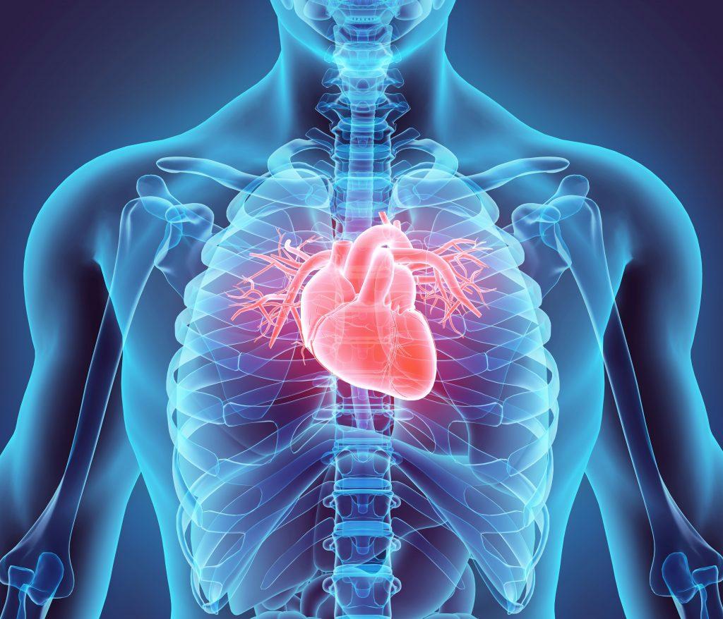 opm-najmniejszy-na-swiecie-stymulator-serca