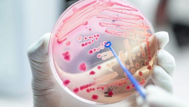 opm-szczepienia-ochronne-w-dobie-koronawirusa