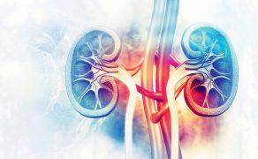 opm-leczenie-raka-nerki